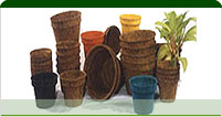 Coco Coir Products