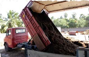 Washing of coco coir peat